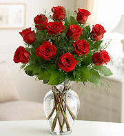 Classic Red Roses