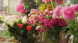 Cloud Nine Florist