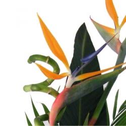 Connemar Florist