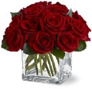 Contempo Rose Cube