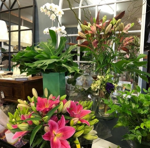 Cottesloe Flowers