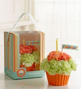 Cupcake In Bloom  Green And Orange