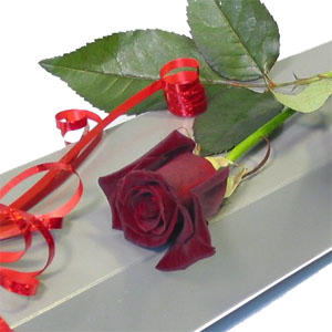 Single Red Rose In A Box
