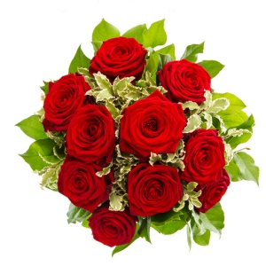 Dozen Finest Red Roses