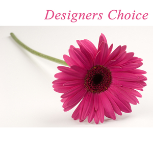 Florists Choice Box