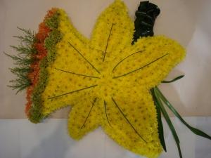 Daffodil Tribute