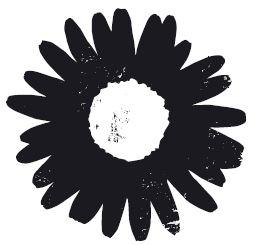 Daisy Chain Florist