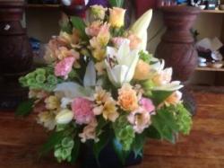Dandelions of Foxton