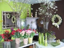 Darryl Wiseman Flowers