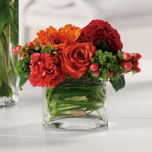 Order Dazzling Delight flowers