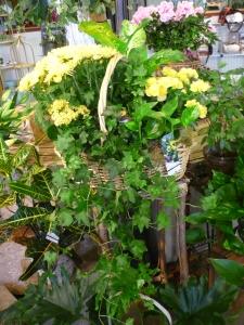 Deluxe Green And Blooming Garden