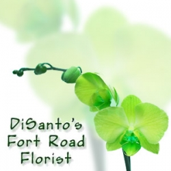 DiSanto's Fort Road Florist