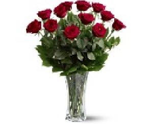 Dozen Red Roses Arranged