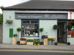 Dublin House of Flowers