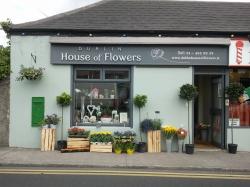 Dublin House of Flowers