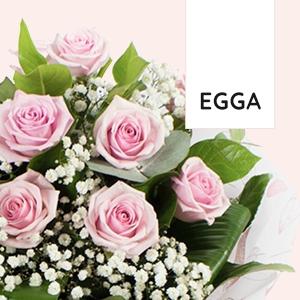 EGGA LLC