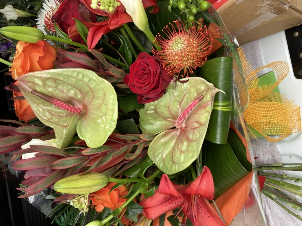 Elegant Blooms LTD