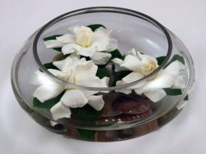 Elegant Gardenia Trio
