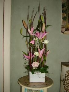 European Lilies