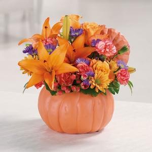 EV 58-11 Pretty Pumpkin Petals