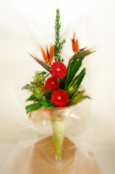 Exotic Floral Designs - Mississauga