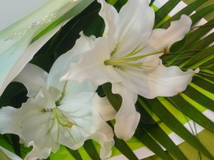 Fabulously Fragrant Lily