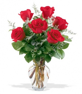 Fancy Half Doz. Red Rose Vase #P0506