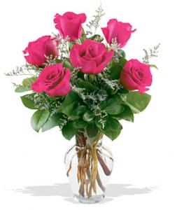 Fancy Half Dozen Pink Roses #P0507