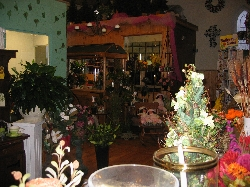 Fendley's Flowers