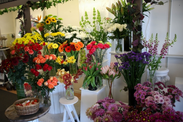 Findlays Flower Studio