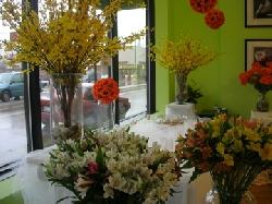 Flor del Monte, Inc.