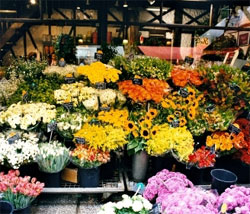 Colonial Flowers and Gift Shoppe