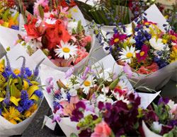Taree Flowers and Gifts
