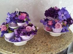 Flower Power Of Rothwell
