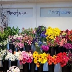 Flowerfusion - Flowers & Gifts