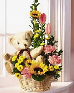 Flowering Bear