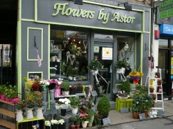 Flowers By Astor