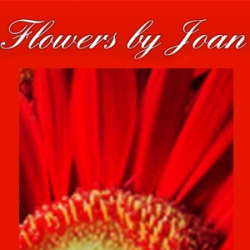 Flowers By Joan