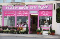 Flowers by Ray
