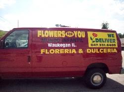 Flowers for you & Mundo Infantil