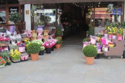 Flowers From Ltd