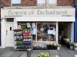 Flowers of Enchantment
