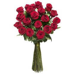 12 Red Roses with foliages