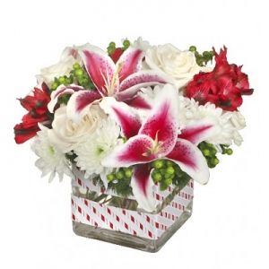 Order Starry-Eyed Joy flowers