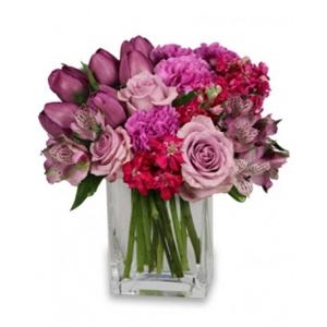 Order Precious Purples flowers