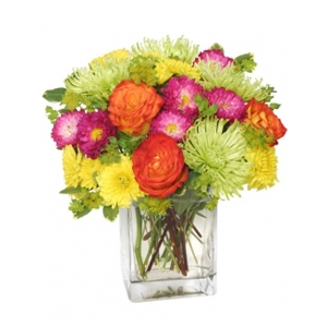Order Neon Splash flowers
