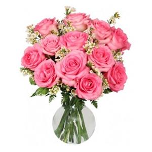 Order Pink Roses flowers