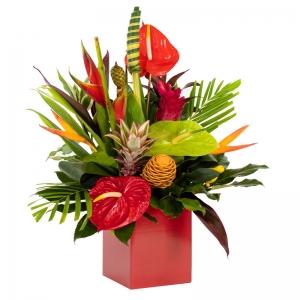 Order Hot Tropics flowers