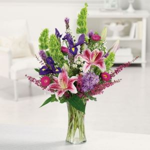 Order Stargazer Garden flowers
