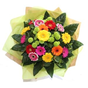 Mixed Gerbera Bouquet